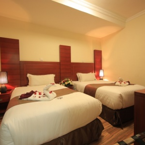 Miracle hotel twin bed room